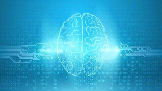 孩子大脑.jpg
